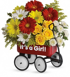 Baby's Wow Wagon by Teleflora - Girl in Lewiston ME, Val's Flower Boutique, Inc.