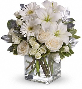 Shining Star Bouquet by Teleflora in Eugene OR, Dandelions Flowers