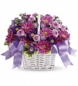 Daisy Daydreams in Cocoa FL, A Basket Of Love Florist
