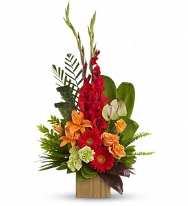 Teleflora's Beautiful Embrace Bouquet in DeKalb IL, Glidden Campus Florist & Greenhouse