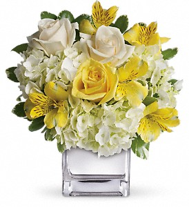 Teleflora's Sweetest Sunrise Bouquet in Bluffton IN, Posy Pot