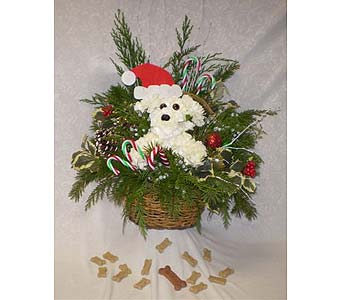 OUR HOLIDAY PET in Hanover PA, Country Manor Florist