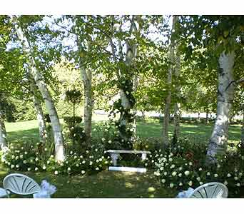 WEDDING IN A CREATED ROSE GARDEN in Hanover PA, Country Manor Florist
