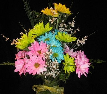 Crazy 4 Daisys in Bismarck ND, Dutch Mill Florist, Inc.