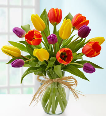 Timeless Tulips in Port Charlotte FL, Punta Gorda Florist Inc.