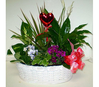 Hearts and Flowers Garden in Falmouth MA, Falmouth Florist 508-540-2020