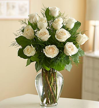Dozen Premium Long Stem White Roses in Indianapolis IN, George Thomas Florist
