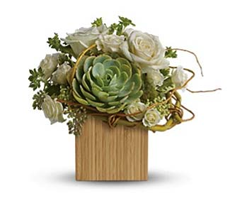 Bamboo Splender in Rancho Santa Fe CA, Rancho Santa Fe Flowers And Gifts
