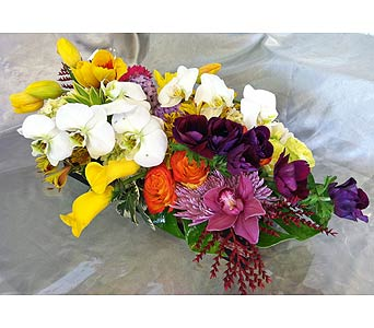 Colorful Celebration in Santa Monica CA, Santa Monica Florist
