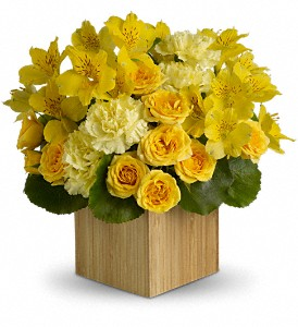 Teleflora's Sunshine Chic in Salt Lake City UT, Huddart Floral