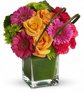 Teleflora's Party Girl in Chicago IL, Wall's Flower Shop, Inc.