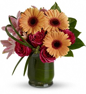 Be a Flirt in Quincy MA, Fabiano Florist
