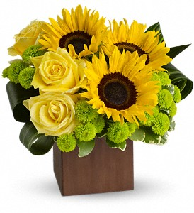 Teleflora's Sunflower Fantasy in Chicago IL, Wall's Flower Shop, Inc.