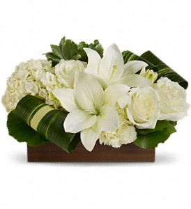 Sweet Desire by Teleflora in Toronto ON, Verdi Florist