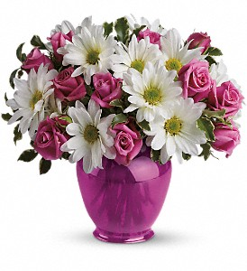 Teleflora's Pink Daisy Delight in Patchogue NY, Mayer's Flower Cottage
