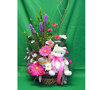 Nine Lives Bouquet in Campbell CA, Citti's Florists