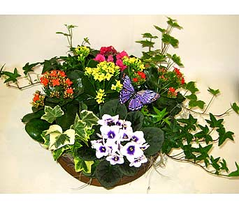 Arrangement in Brooklin ON, Brooklin Floral & Garden Shoppe Inc.