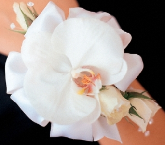 elegant orchid wrist corsage in Scarborough ON, Helen Blakey Flowers