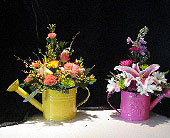 Sprinkle some Joy in Bismarck ND, Dutch Mill Florist, Inc.