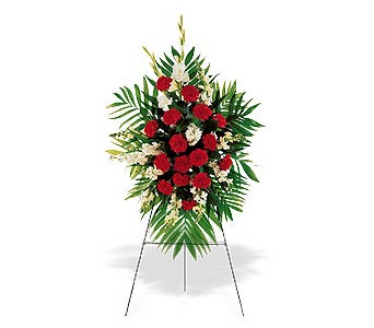 Red & White Memories-FREE DELIVERY! in Cohasset MA, ExoticFlowers.biz