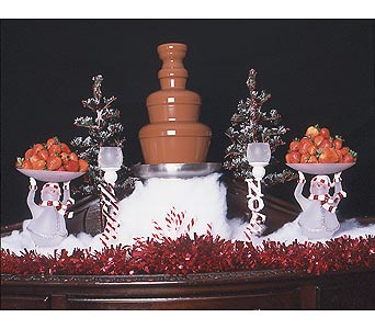 Chocolate Fountain Holiday Parties in Grand Island NE, Roses For You!