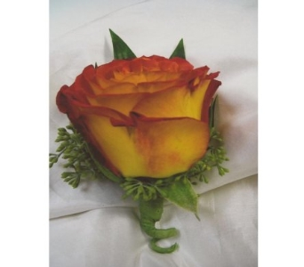 Circus Rose Boutonniere in West Bloomfield MI, Happiness is...Flowers & Gifts