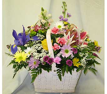 FRESH SPRING HUMMINGBIRD BASKET in New Paltz NY, The Colonial Flower Shop