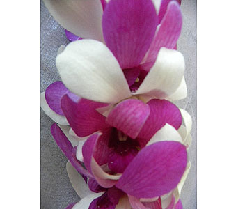 Light Purple, White Double Lei in Sunnyvale CA, Flowers By Sophia