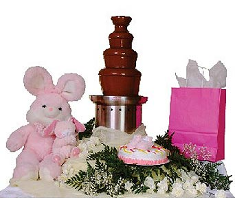 Chocolate Fountain Baby Showers in Grand Island NE, Roses For You!
