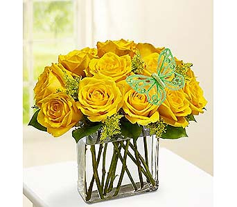Modern Roses - Choose your color in Bradenton FL, Ms. Scarlett's Flowers & Gifts