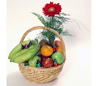 Fruit and Bud Vase in Ottawa ON, The Fresh Flower Company