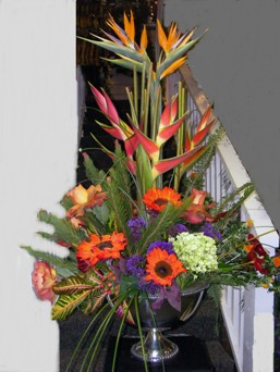 Tropical Breeze in Lake Charles LA, A Daisy A Day Flowers & Gifts, Inc.