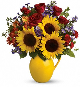 Teleflora's Sunny Day Pitcher of Joy in Salem MA, Flowers by Darlene/North Shore Fruit Baskets