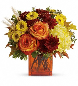 Teleflora's Autumn Expression in Dublin OH, Red Blossom Flowers & Gifts