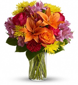 Bright Smiles in Toronto ON, Verdi Florist