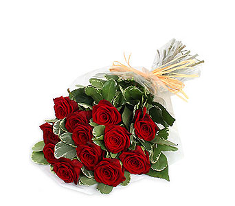 Long Stem Premium Red Roses in Ajax ON, Reed's Florist Ltd
