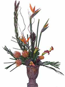 Birds of Paradise Centerpiece  in Raleigh NC, North Raleigh Florist