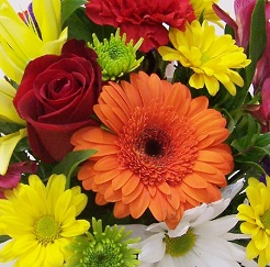 Florist Designed in Mesa AZ, Watson Flower Shops