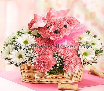 Princess Pink Doggie Flower Basket in Santa Monica CA, Edelweiss Flower Boutique