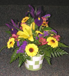 Bunch of Sunshine  in Lake Charles LA, A Daisy A Day Flowers & Gifts, Inc.