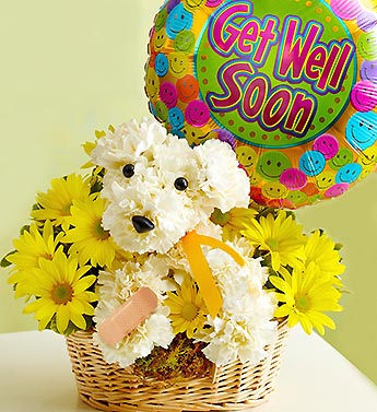 Sick As A Dog in Bradenton FL, Ms. Scarlett's Flowers & Gifts