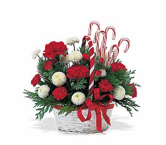 Candy Cane Basket in Cohasset MA, ExoticFlowers.biz