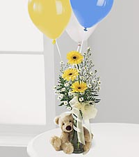 Gerbera Daisy & Bear Bouq in Mooresville NC, All Occasions Florist & Boutique