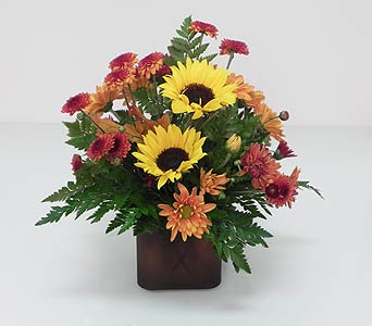 Sunflower Promise in Indianapolis IN, Gillespie Florists