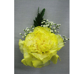 Carnation Boutonniere in Irvington NJ, Jaeger Florist