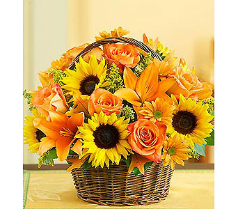 Fields of Europe for Fall Basket in Bradenton FL, Ms. Scarlett's Flowers & Gifts