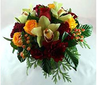 Warm Elegance in Campbell CA, Citti's Florists