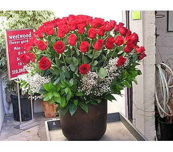 Six Dozen Long Stem Red Roses in West Los Angeles CA, Westwood Flower Garden