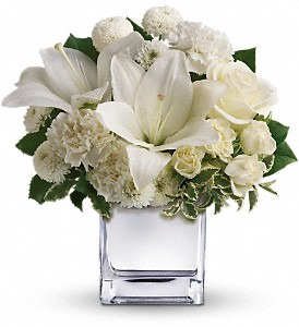 Teleflora's Peace & Joy Bouquet in Dubuque IA, New White Florist