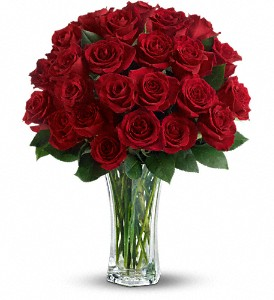 Love and Devotion - Long Stemmed Red Roses in Dubuque IA, New White Florist